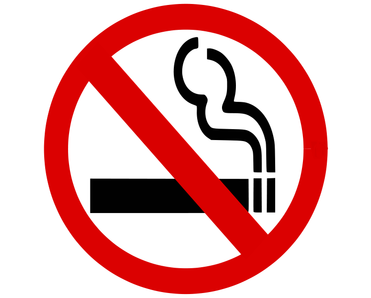 File:NoSmoking-pn.svg
