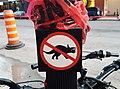 No Triceratops (34323709940).jpg