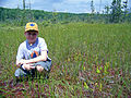 Nolan in the fen, surrounded by pitcher plants (5085872007).jpg