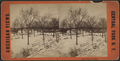 North end of the Mall, from Robert N. Dennis collection of stereoscopic views.png