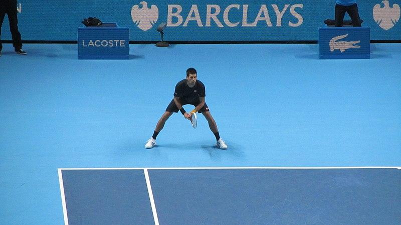 File:Novak Djokovic (8325901226).jpg