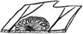 ONF Fig 01 - Sorus of Polypodium falcatum.png