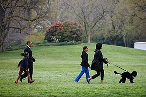 The First family and Bo, their new Portuguese ...