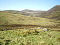 Old shieling above the Allt a' Gharbh-choire - geograph.org.uk - 1344397.jpg