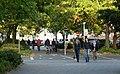 Oldenburg (Niedersachsen) Der Herbst Ist Da (48107256).jpg