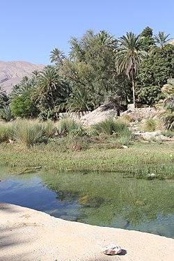 Oman 2014 (16222028112).jpg