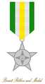 Order of Service - Medal of Service GUYANA.PNG