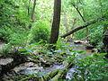 Otter Creek Park 1.jpg