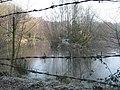 Owlbeech wood pond - geograph.org.uk - 637424.jpg