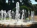 Palau de Pedralbes - Brolladors.jpg