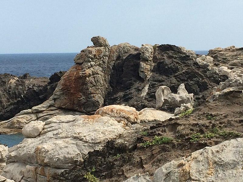 File:Parc Natural del Cap de Creus ES512007 Paratge de Tudela Paisatges de Dalí 2.jpg