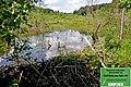 Parc naturel des deux ourthes07.jpg