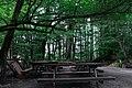 Parco naturale regionale delle Serre 29.jpg