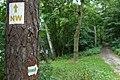 Park Krajobrazowy Promno, Brzostek lake (13).JPG