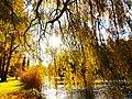 Park views in autumn (Netherlands 2011) (6311928850).jpg