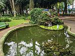 Parque Santos Dumont 2017 027.jpg
