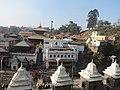 Pashupatinath Temple IMG 1496 41.jpg