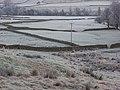 Pastures, Leadgate - geograph.org.uk - 640693.jpg