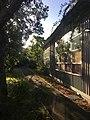 Pathway and School Building at Glenaeon Rudolf Steiner School.jpg