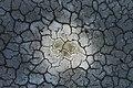 Patrick-hendry-1112906 Cracked earth.jpg