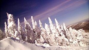 Paysage hivernal / Winter Landscape, Mont Trem...