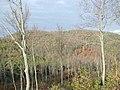 PeR - Il Parco dell'Energia Rinnovabile - Riscaldamento da bionassa - panoramio.jpg