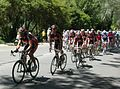 Peloton 2 second lap, Stirling, TDU 2010 Stage 3.JPG