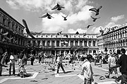 Piazza San Marco and its famous pigeons