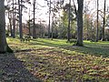Picnic area at Wakehurst Place - geograph.org.uk - 1622336.jpg