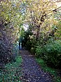 Picturesque path connects Bow to Hopesmore drive. READ INFO IN PANORAMIO-COMMENTS - panoramio.jpg