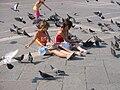 Pigeons4.jpg