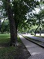 Piste cyclable, parc Lafontaine, Montréal 2005-08-29.jpg