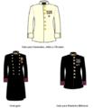 Placas de Cursos Nacionales - Uniformes de gala y de gran gala.png