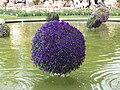 Plants of Tivoli Gardens 2018 04.jpg