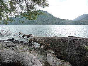 Mascardi Lake - Lake Mascardi shore, close to Chilco stream
