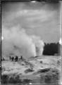 Pohutu Geyser at Whakarewarewa, 1916 ATLIB 286395.png