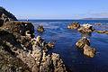 Point Lobos September 2012 005.jpg