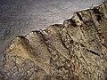 Polishedironmeteorite2.jpg