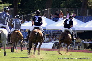 """Polo is played Sundays at 3PM, June through September, weather permitting"