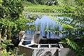 Pond Lily Fishway (14720448357).jpg