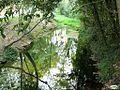 Pontevedra-Río Gafos 06 (3969467125).jpg