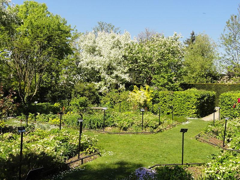 File pontoise 95 jardin des cinq sens wikimedia for Jardin 44 des 5 sens