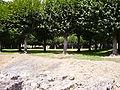 Port-Royal-des-Champs - Le cloître d'arbres 2.JPG