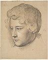 Portrait of a Young Man MET DP827290.jpg