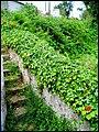 Portugal Mafra (477147224).jpg