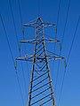Power line (6973224489).jpg