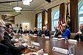 President Trump meets with the Coronavirus Task Force (49613833128).jpg