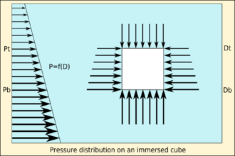 Buoyancy - Pressure distribution on an immersed cube