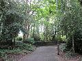 Priory Wood, St Michael's, Liverpool (1).JPG