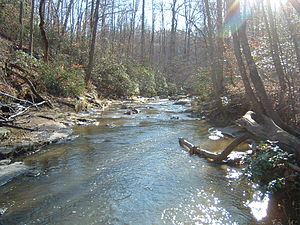 Prince William Forest Park - The North Fork of Quantico Creek, from the North Valley trail